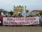 Aufstand gegen Massentierhaltung