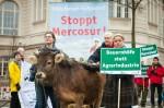 Einer ungewissen Zukunft schauen Bäuerinnen wie Anja Hradetzky entgegen, wenn der Mercosur-Freinhandelsvertrag  in Kraft tritt. (Foto: Campact)