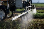 Herbizid Glyphosat Herbizide Acker