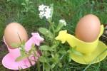 Oster Eier Ostern Ostereier