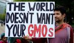 March Against Monsanto / Foto: Flickr.com, Stephen Melkisethian