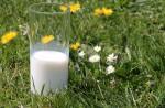 Niemand zahlt so wenig für die Milch, wie die größte deutsche Molkerei (Foto: CCO, Pixabay)