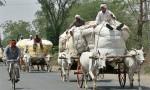 Indien: Wachsender Widerstand gegen EU-Freihandelsabkommen
