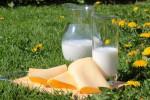 Kein Ende der Milchkrise in Sicht (Foto: CCO, Pixabay)