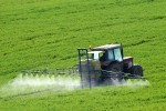Pestizide Glyphosat Spritmittel Herbizide