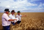Farmer USA Ernte Bauern Landwirte