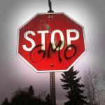 Mit dem neuen Gesetz würden flächendeckende GVO-Anbauverbote faktisch unmöglich, kritisieren Gegner. (Foto: CCO, Pixabay)
