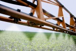 Spraying a soybean field